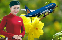 Vé máy bay Tết đi Vinh