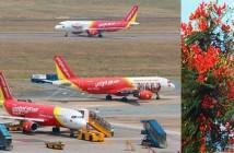 Mua vé máy bay Tết 2015 Hải Phòng đi TPHCM giá rẻ