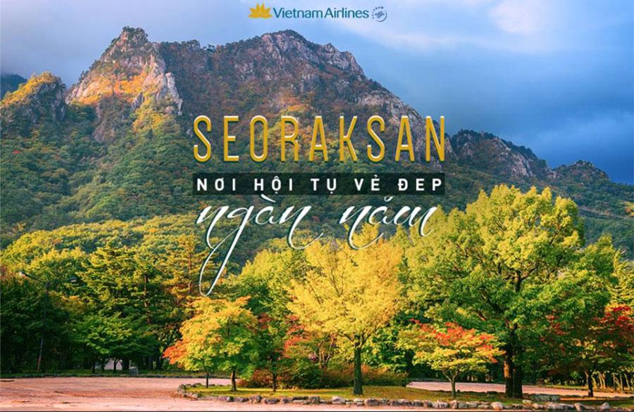 Vé máy bay đi Hàn Quốc của Vietnam Airlines giá rẻ nhất từ 260usd khứ hồi