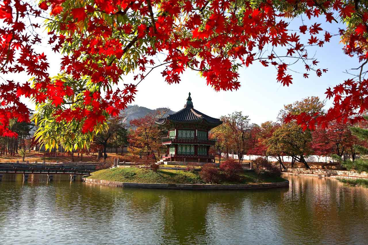 Korea Tours. Korea Travel Packages and Hotel reservation