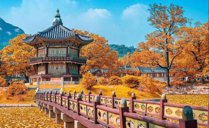 Vé máy bay Nha Trang Hàn Quốc giá rẻ Vietjet Air
