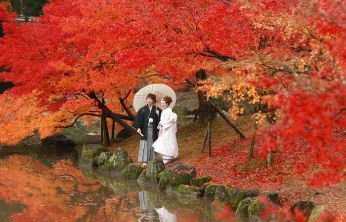 Du lịch Nhật Bản giá rẻ. Đặt tour du lịch, vé máy bay đi Nhật Bản